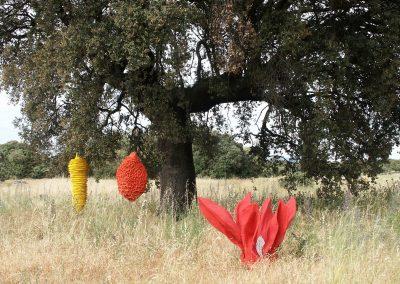 Steeneik met vruchten